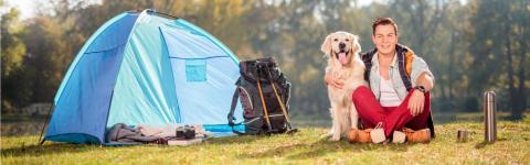 Campings pour chiens